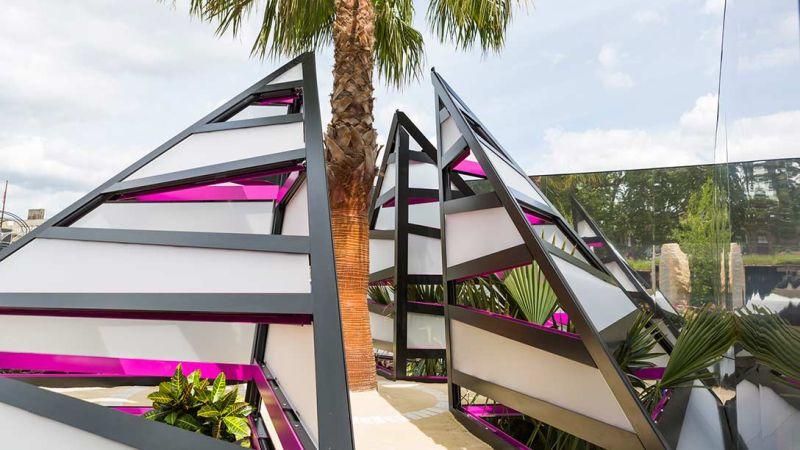 palma we wnętrzu metalowej piramidy - zdjęcia od frontu