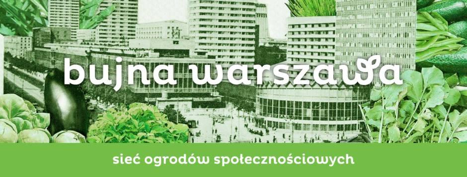 zielona Warszawa - grafika centrum Warszawy w jarzynach