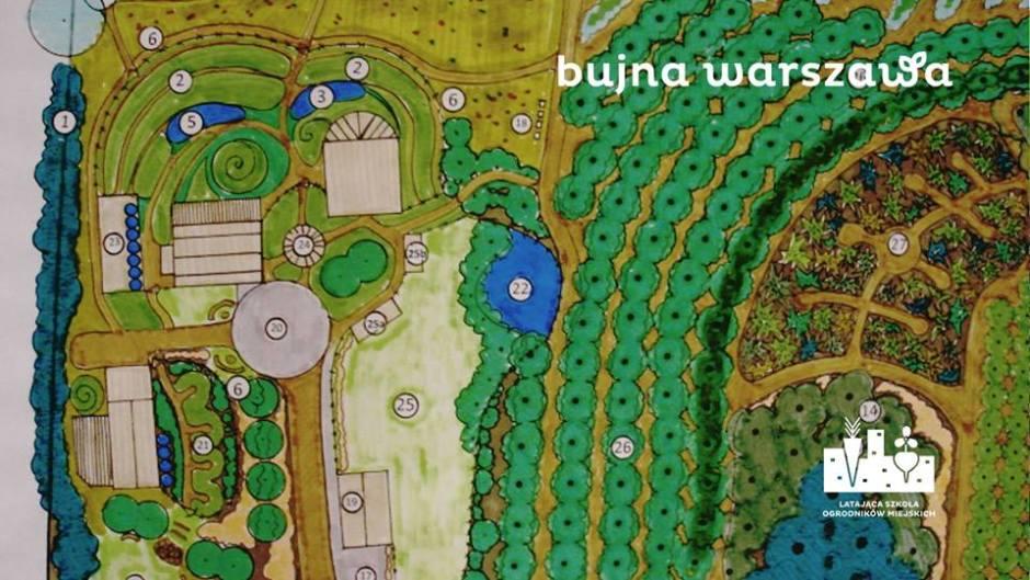 Bujna Warszawa - kolorowy rysunek planu ogrodu społecznego