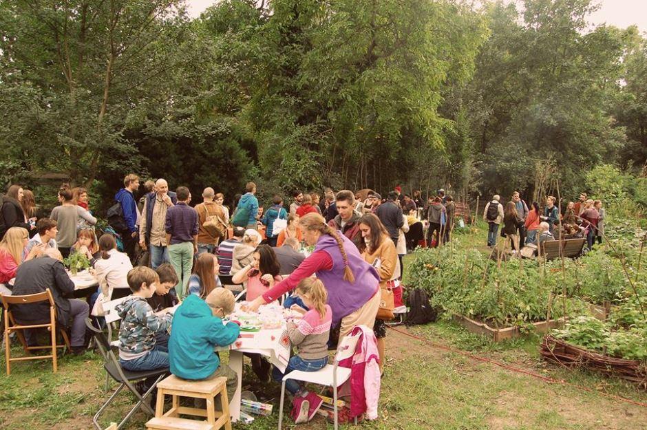 Warszawa biesiaduje w ogrodzie społecznym