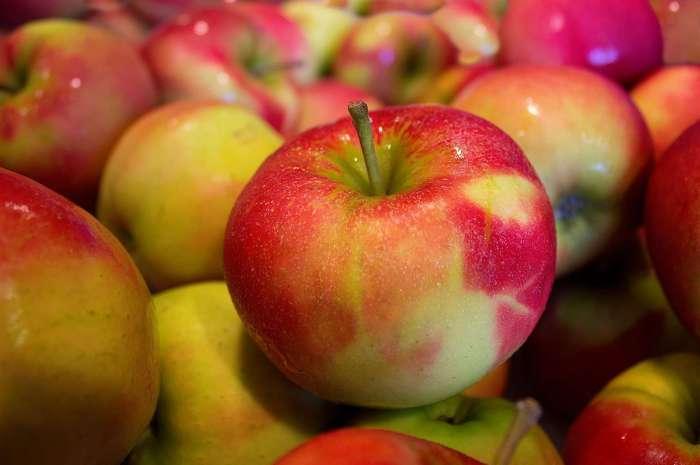 Sezon na jabłka dla Słodziaków