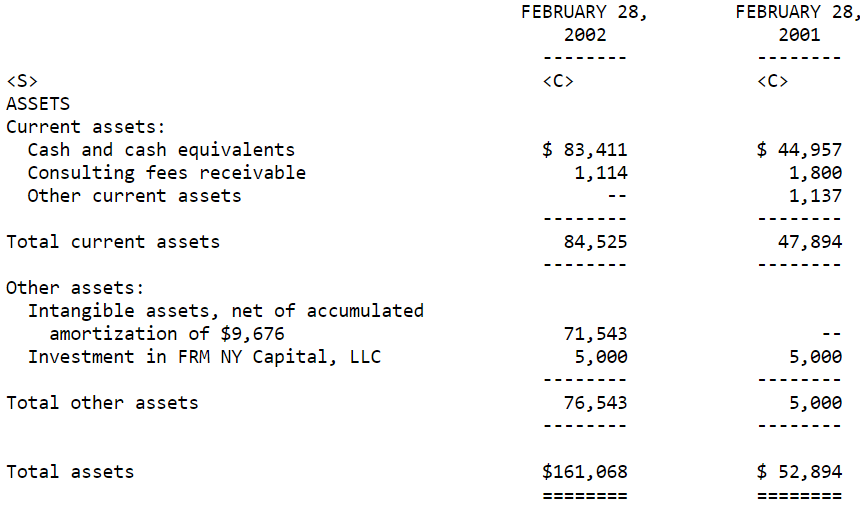 FRMO Corp Balance Sheet 2002