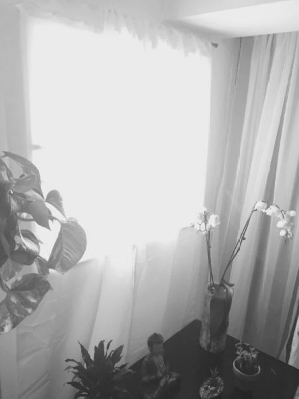fereastra7