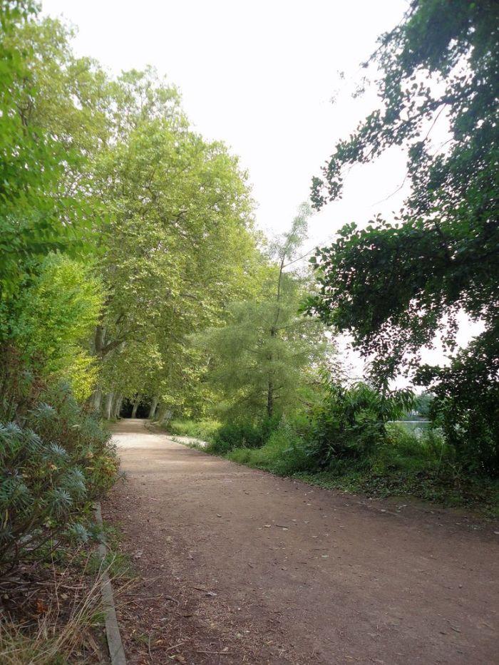 Find your path. At Parc de la Tête d'Or, Lyon, France