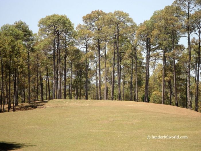 Rolling Greens. Ranikhet Golf Course, India.