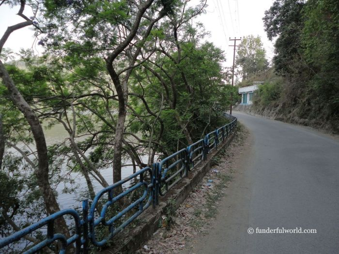 Take me along. Naukuchiatal, Uttarakhand, India.