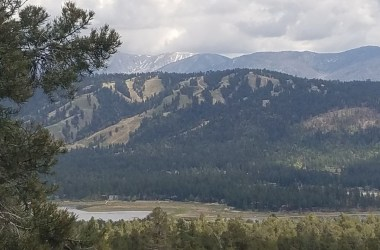 Cougar Crest Trail