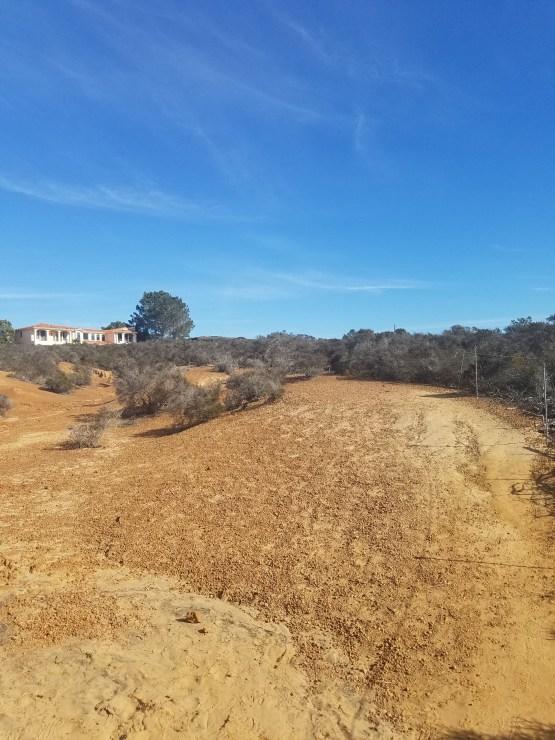 Torrey Pines Reserve Extension Margaret Fleming
