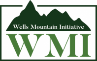 2020 Wells Mountain Initiative Scholars Program