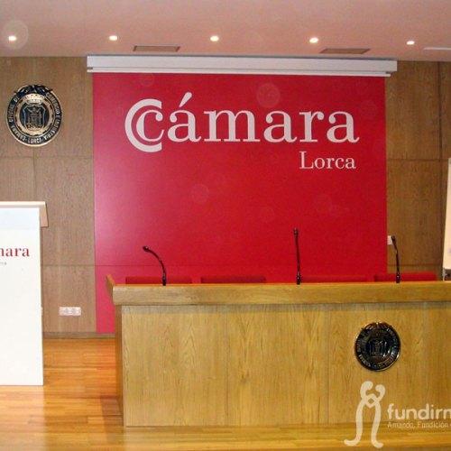 camara1