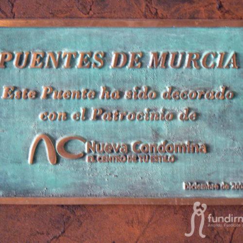 civil_puente_murcia3