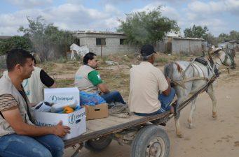Delivering fresh vegetables in Gaza