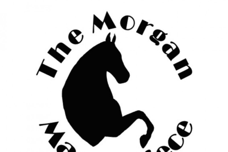 Fundraiser by Larry Plamann : Morgan Masterpiece Charity Show