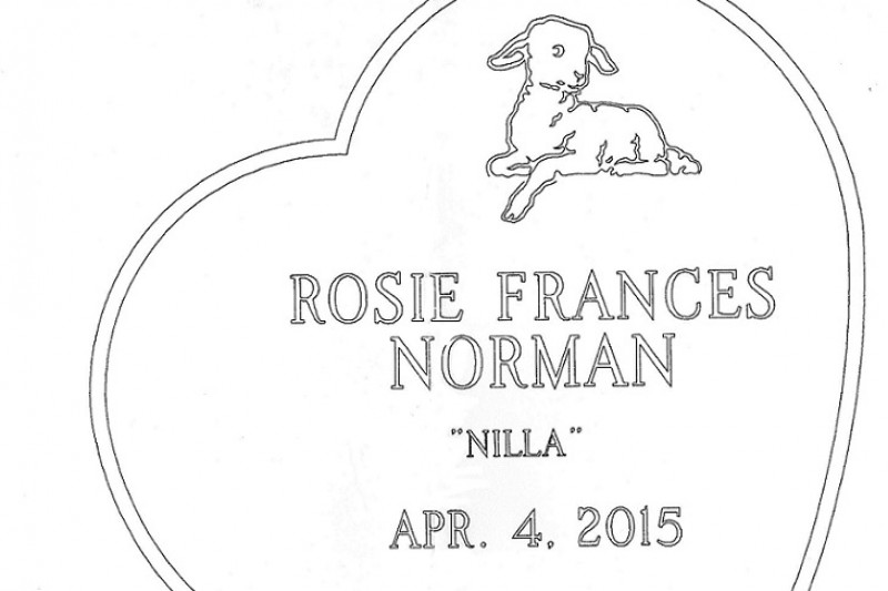 Fundraiser by Emily Grace Norman : Rosie's Headstone
