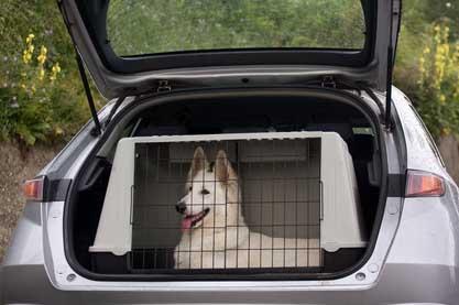 cómo cargar tu coche