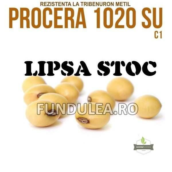 Samanta soia PROCERA 1020 SU, C1, Compania Seminte Fundulea