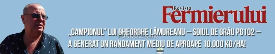 """Soiul de grâu PG102 – """"Campionul"""" lui Gheorghe Lămureanu a generat un randament mediu de aproape 10.000 kg/ha"""