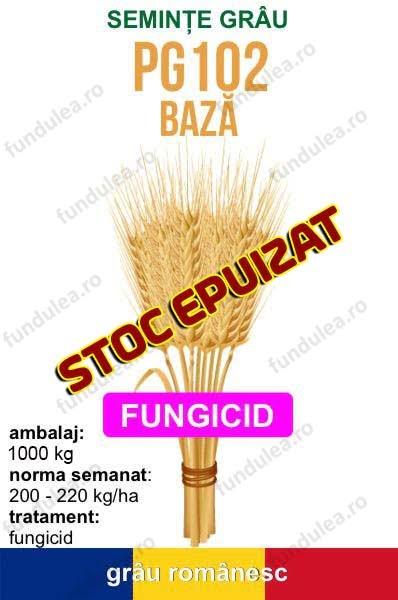 seminte-grau-PG102-baza-TRATAT-STOC