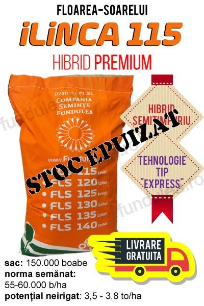 samanta hibrid premium floarea-soarelui ilinca 115 stoc, compania seminte fundulea