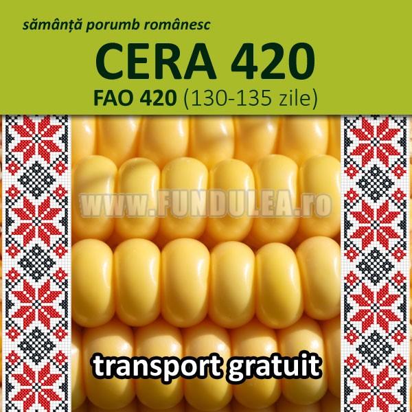Samanta porumb Procera CERA 420 (grupa FAO 420)