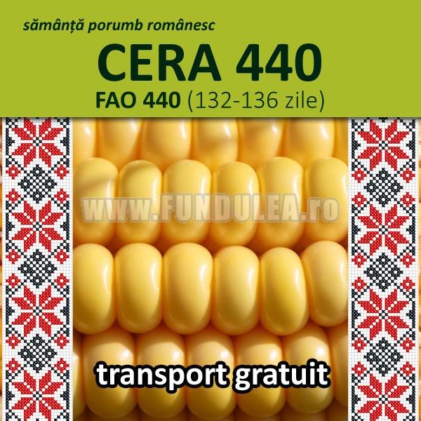 Porumb CERA 440, Fundulea Seminte, 0730-31.21.21