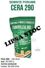 Samanta porumb CERA 290 este un hibrid de porumb simplu