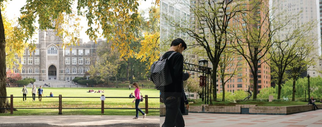 Best Colleges In New York State