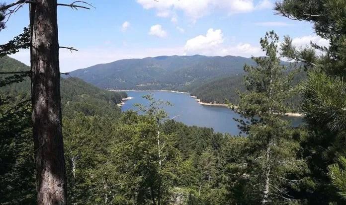 sila-foresta-e-lago