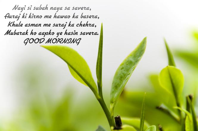 Good Morning Text Messages SMS
