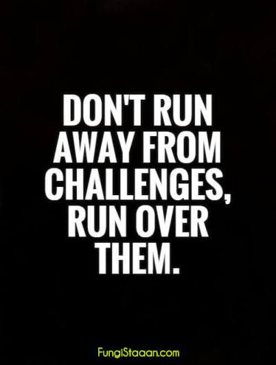 Dont Run Away from Challenges Quotes