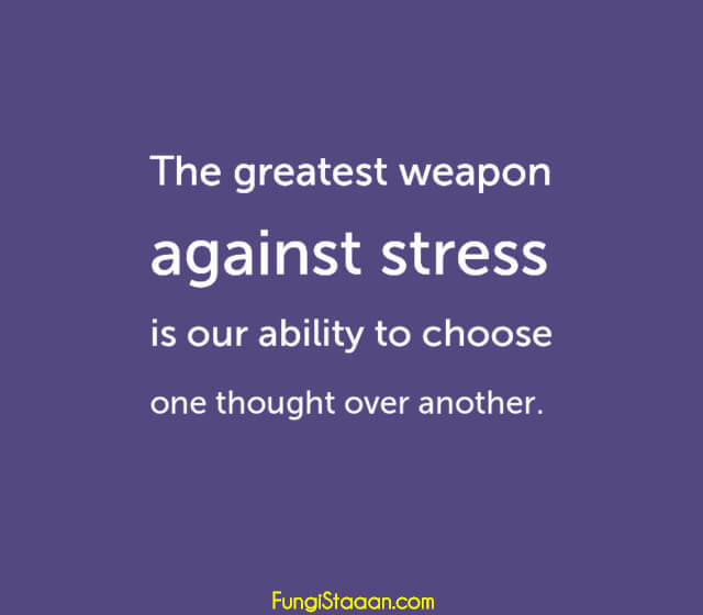 TOP 100+ Stress Quotes Sayings with Images - FungiStaaan ...