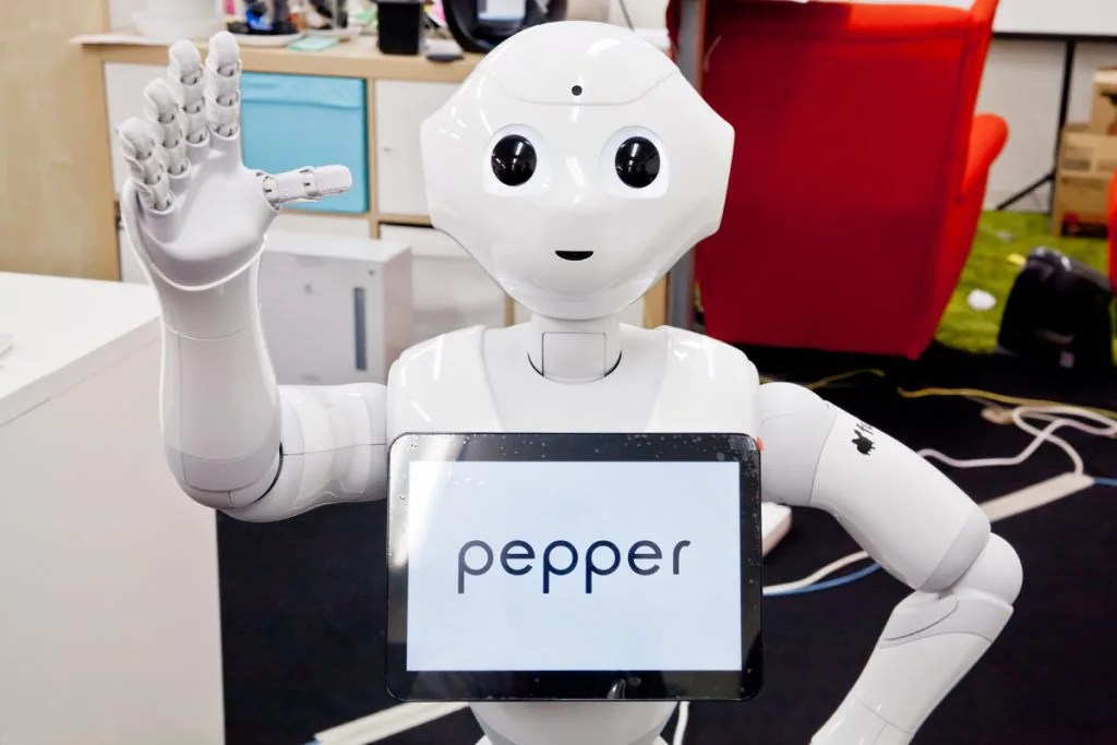 Pepper セットアップ