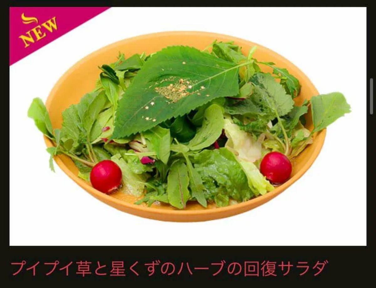 プイプイ草と星くずのハーブの回復サラダ