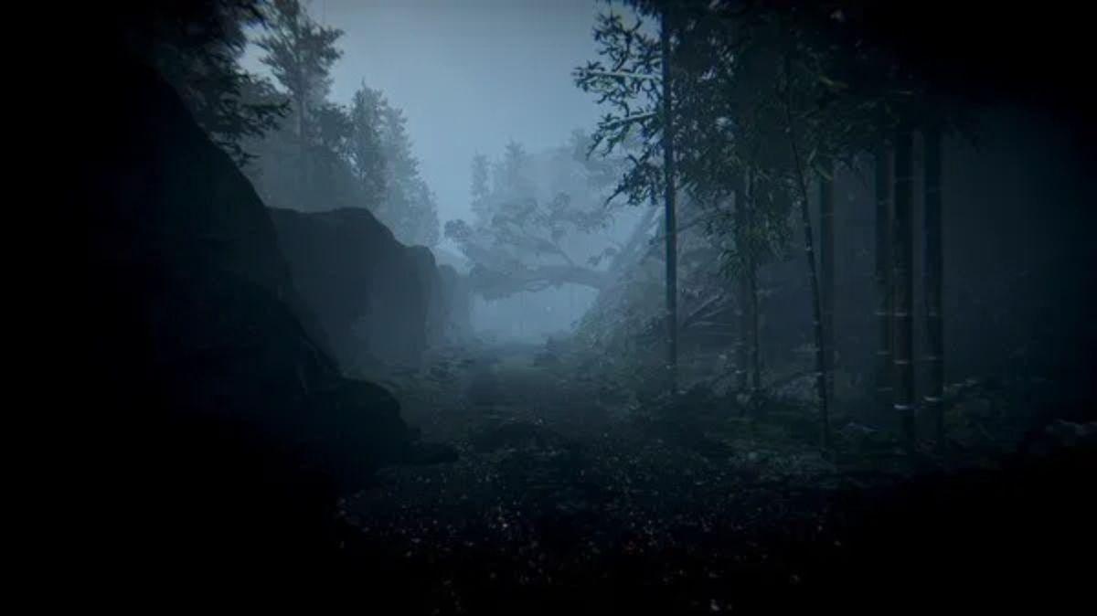 鬱蒼とした森の中で子供たちはどこに・・・