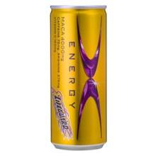 チェリオ ライフガードX 250ml缶×30本入