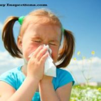 How Mold affects the children?