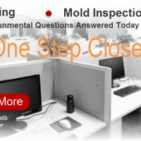 Mold Test Los Angeles