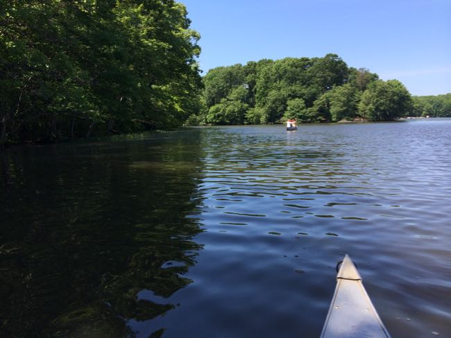 8 Great Summer Hikes In Northern Virginia