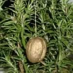 Anleitung: Vergoldete Walnüsse für den Weihnachtsbaum