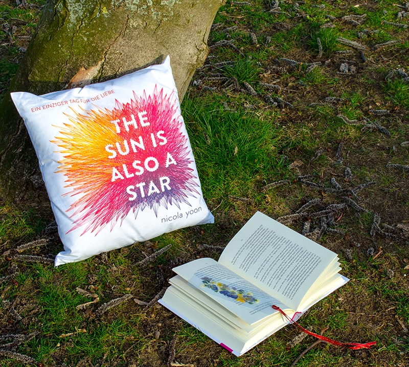 The Sun is also a Star Jugendroman