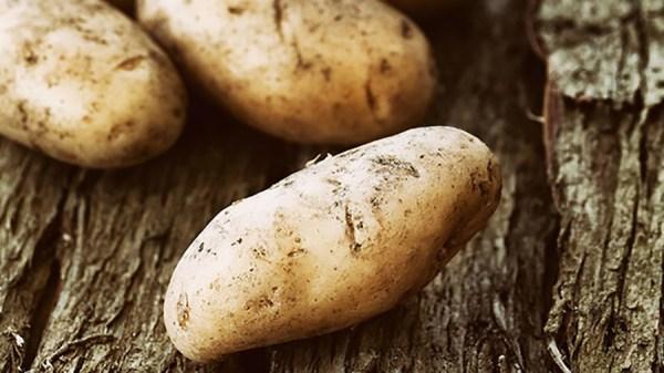 Kartoffel-Käsesuppe mit Hmmm-Effekt