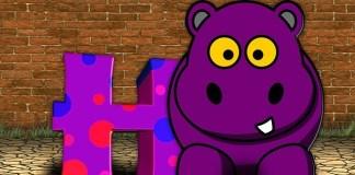 Hippo Jokes - Hippopotamus jokes