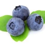 Blueberry Jokes - Jokes about Blueberries