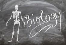 Biology Jokes for Teachers, Kids and Biologists