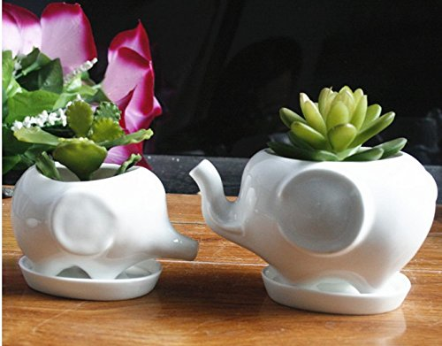 cute-white-ceramic-elephant-pot-with-saucer-tray