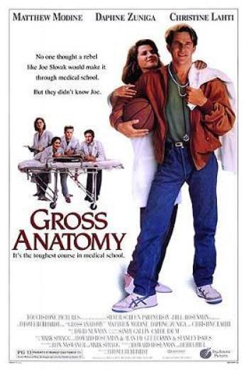 Gross_anatomy_poster