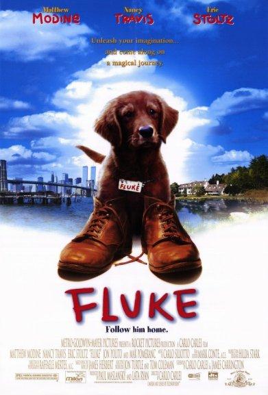 fluke-movie-poster-1995-1020249006