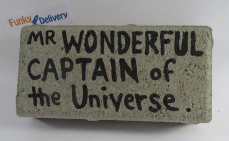 Send a Brick - Mr. Wonderful - Captain of the Universe