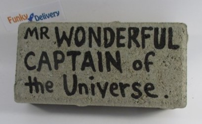 Send a Brick - Mr. Wonderful - Captain of the Universe