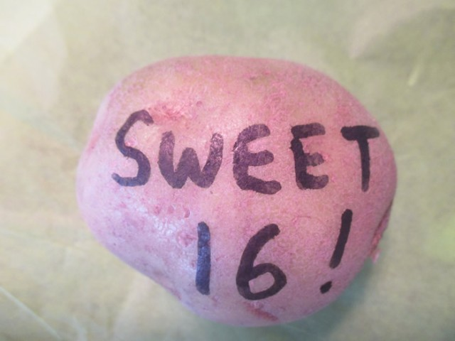 Sweet 16 Potato
